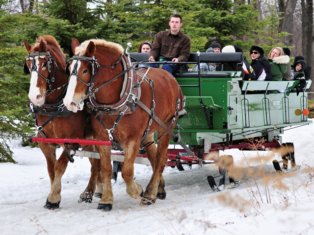 Sleigh Rides At Seven Springs